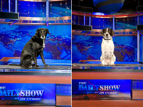 Left: Parker Right: Ally on the set of The Daily Show