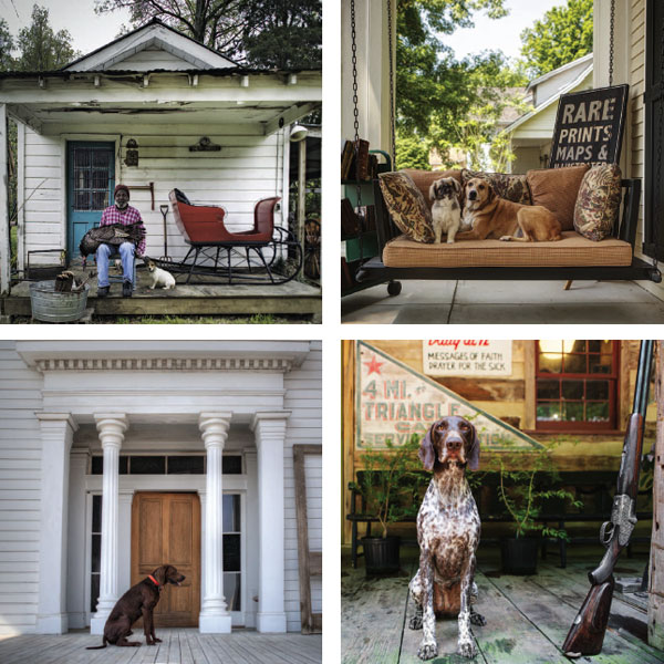 Upper left, clockwise: Biscuit, a Jack Russell Terrier, in Memphis, Tennessee; Fancy & Kai, in Leiper's Fork, Tennessee; Memphis, a Deutsch Kurzhaar, in Bingham, Tennessee; Red, a Redbone Coonhound, in Benoit, Mississippi