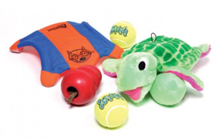 9 Fun and Educational Toys for Dogs.
